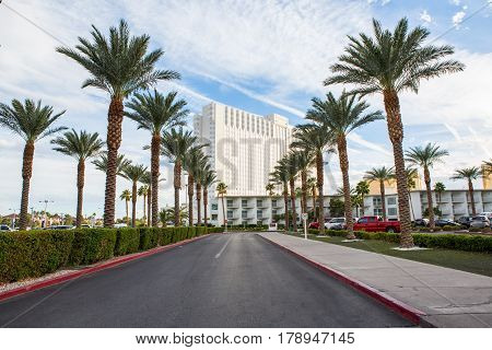 straight road with rows of palm trees right and left with the building in background las vegas USA