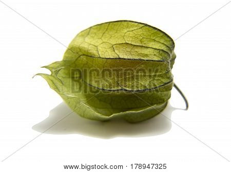 Ripe physalis with shadow isolated on white background