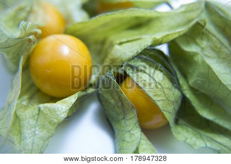 Ripe physalis close up. Cape Gooseberry fruit