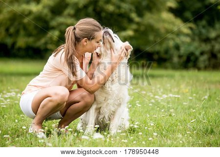 Woman fondles dog at the park with love