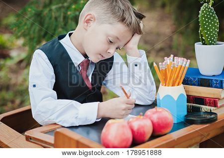 Portrait Of A First-grader Boy Sitting At A Desk