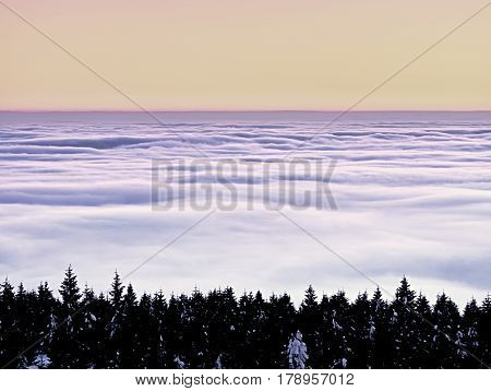 Winter Evening In Mountains. Powder Snow Covered Forest In Mountains