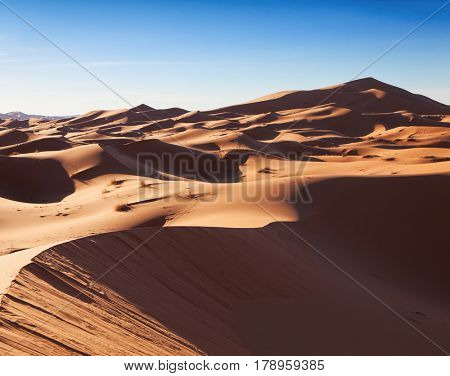 Landscape of the Erg Chebbi at sunrise, Sahara, Morocco