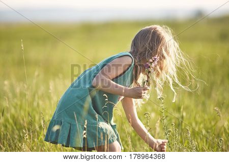 girl in the field at sunny summer morning. girl in green dress Collects a bouquet of wildflowers. The family travels, the children happily ran around the field