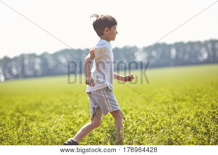 boy in the field at sunny summer morning. boy in white t-shirt Runs into the field. The family travels, the children happily ran around the field