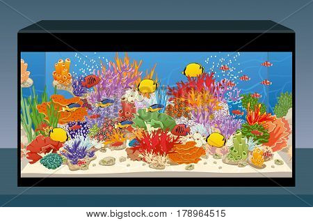 Marine reef saltwater aquarium with fish and corals. Vector illustration