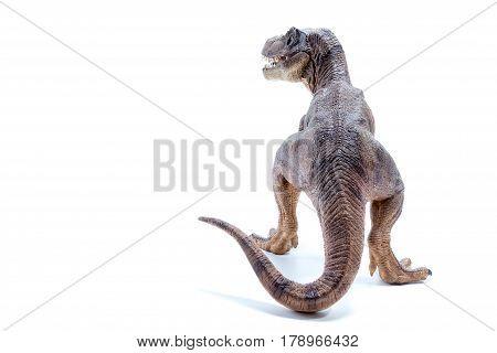 Brown Dinosaur Tyrannosaurus Rex Back View - White Background