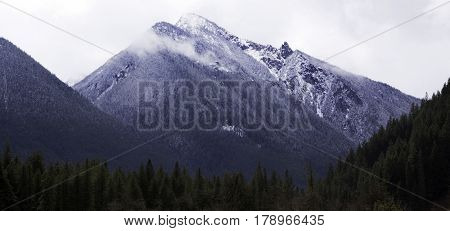 Wide view of a snow capped Rocky Mountain Peak with green and brown trees/foliage in the foreground just outside of Hope, British Columbia on a bright sunny day with blue skies and clouds in April.