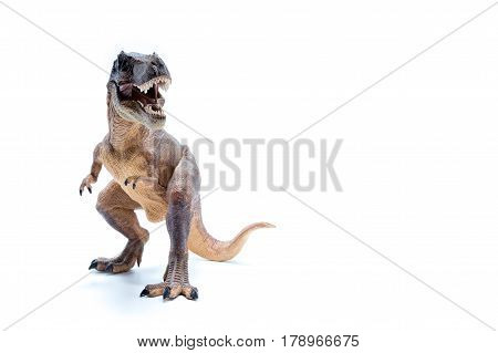 Brown Dinosaur Tyrannosaurus Rex Front View - White Background