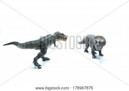 Dinosaur Tyrannosaurus Rex Stares A Triceratops And Is Ready To Attack