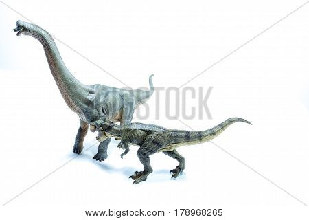 Dinosaur Tyrannosaurus Rex Ready To Attack A Green Brachiosaurus Altithorax - White Background