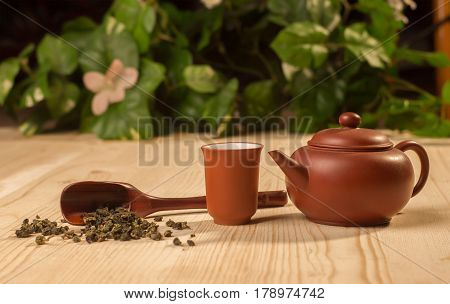 clay tea ceremony set - teapot and cup with green tea oolong on wooden table