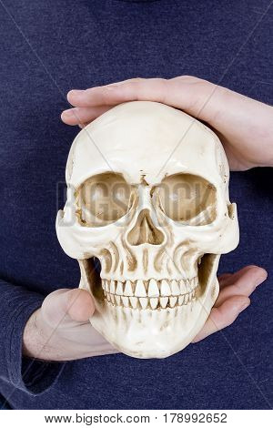 Human skull in human hands on a blue background