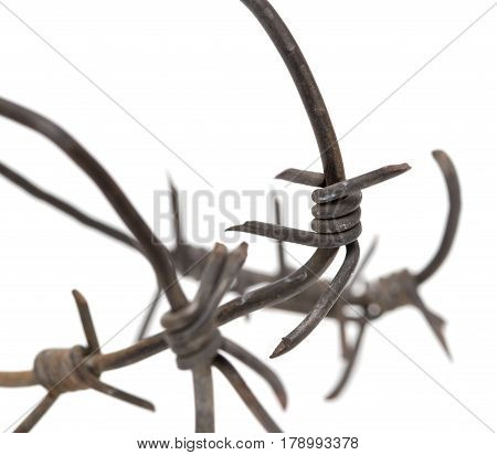 Barbed wire on a white background. macro