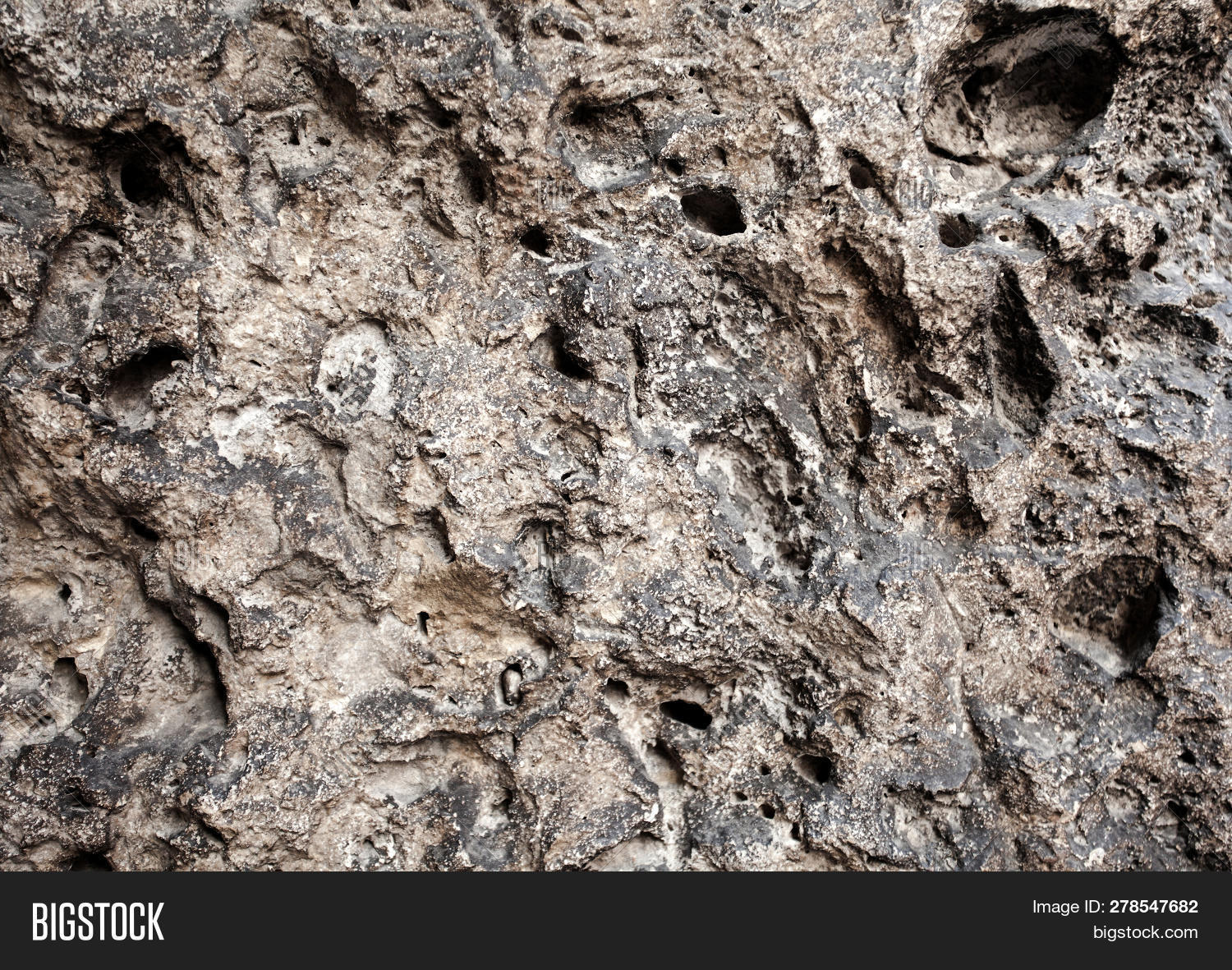 Closeup Brown Porous Image Photo Free Trial Bigstock