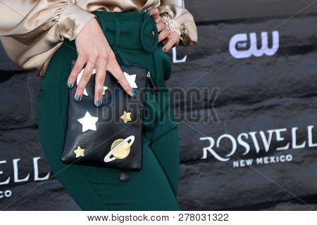 LOS ANGELES - JAN 10:  Lily Cowles purse detail at the