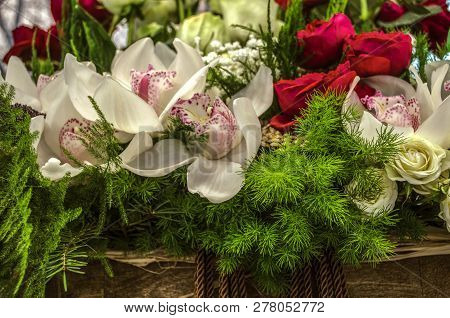 White orchids with pink petal and speckles in the middle, yellow and red roses framed with asparagus and gypsophila in a wicker box poster