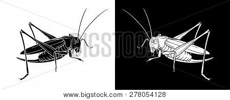 Grasshopper. Insect With Flat Design And Line Art Black And White Version. Silhouette Of Grasshopper