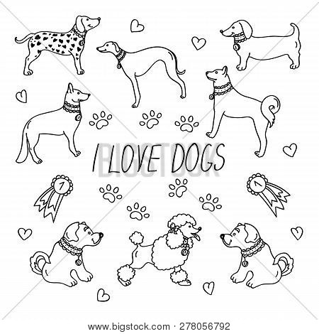 Dog Breeds. Set With The Inscription I Love Dogs. Icons Isolated On White Background In Flat Style.