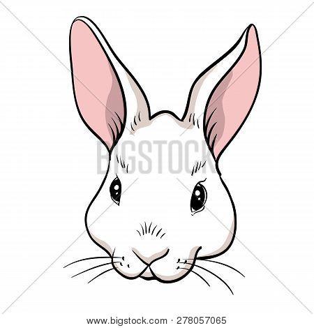 Rabbit Head Isolated. Hand Drawn Style Vector Design Illustrations