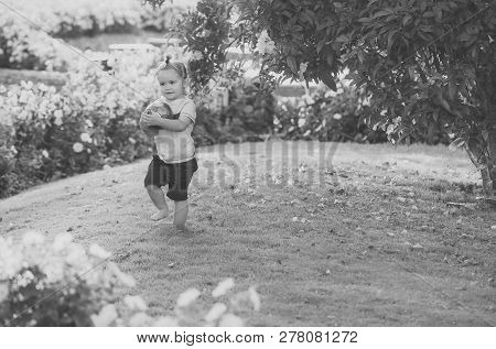 Kid In Garden With Blossoming Flowers. Child Play With Ball On Green Grass On Idyllic Day. Childhood