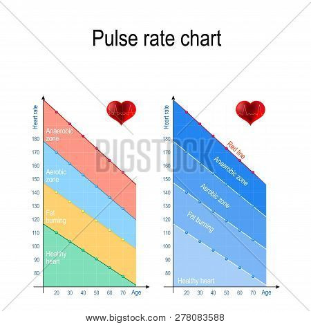 Pulse Rate Chart For Healthy Lifestyle. Maximum Heart Rate. Healthy Heart, Weight Management, Aerobi