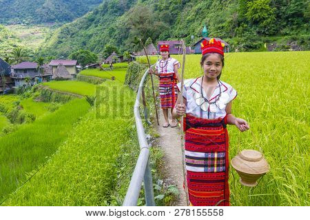 Banaue, Philippines - May 02 : Women From Ifugao Minority Near A Rice Terraces In Banaue The Philipp