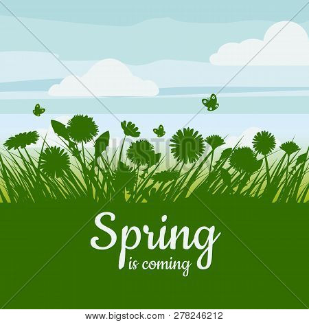 Spring Is Coming. Green Field, Flowers, Sky. Camomile, Grass, Dandelion. Background. Vector, Isolate