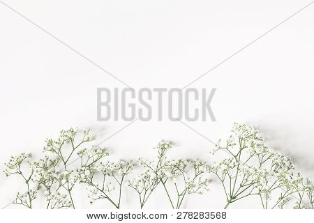 Styled Stock Photo. Feminine Wedding, Birthday Composition With Babys Breath Gypsophila Flowers. Whi