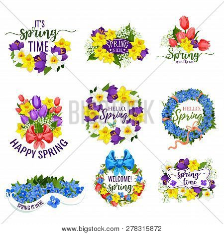 Hello Spring Flowers And Floral Bunches. Vector Blooming Bouquets Of Springtime Tulips, Daffodils Or