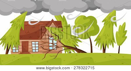 Strong Wind Breaks Trees. Living House And Huge Gray Clouds. Natural Disaster. Windstorm Theme. Flat