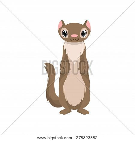 Cute Otter Animal Cartoon Character Front View Vector Illustration