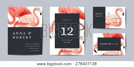 Wedding Invitation Card Template Set. Tropical Flamingo Birds Save The Date Or Congratulation Cards.