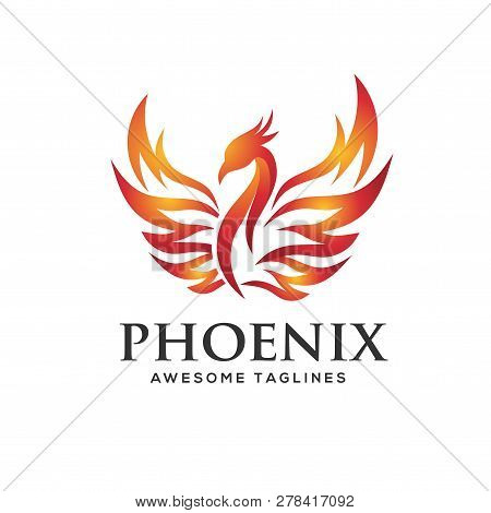 Luxury Phoenix Logo Concept, Best Phoenix Bird Logo Design