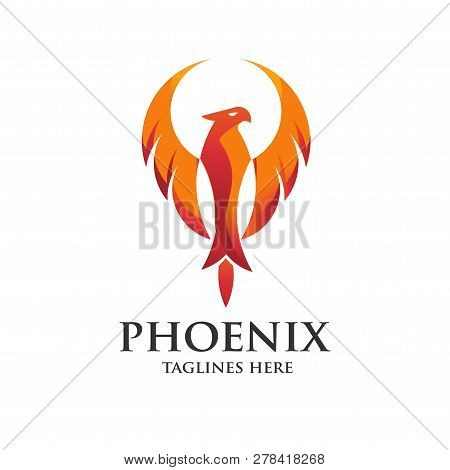 Luxury Phoenix Logo Concept, Best Phoenix Bird Logo Design, Phoenix Vector Logo, Creative Logo Of My