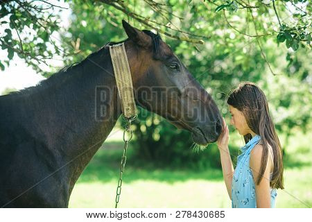 The Power Of Trust And Empathy. Young Woman With Horse On Summer Landscape. Pretty Girl At Horse Ran