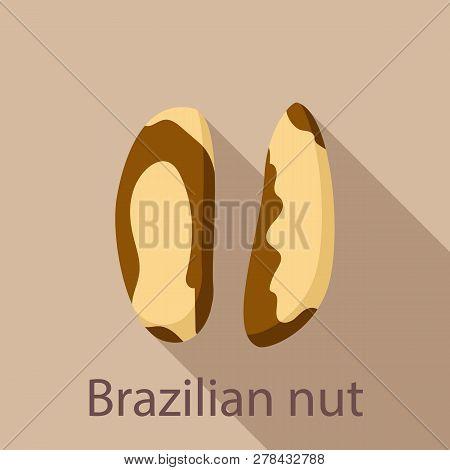 Brazilian Nut Icon. Flat Illustration Of Brazilian Nut Vector Icon For Web Design