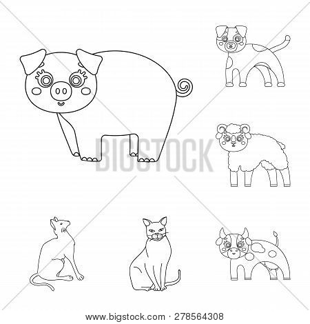 Vector Illustration Of Animal And Habitat Symbol. Set Of Animal And Farm Stock Symbol For Web.