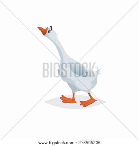 Cute Funny Goose. Cartoon Flat Style Comic Style. Happy Domestic Farm Bird With Long Neck. Vector Il
