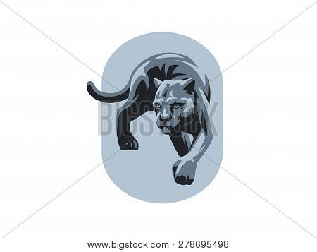 A Panther Or A Leopard Sneaks Up On Its Paws. Vector Illustration.