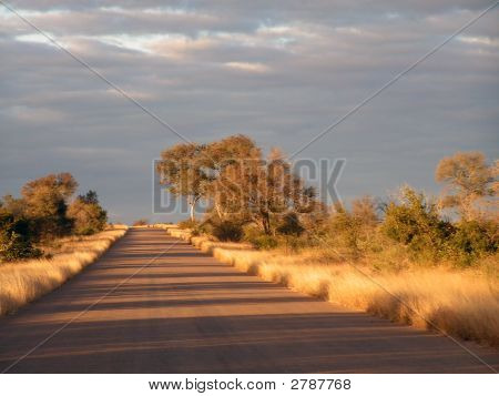 Road In Country