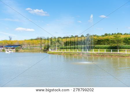 Lake In The Spring Park At Thailand. Spring Landscape.