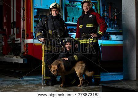 Photo of firemen , women and dogs near fire truck