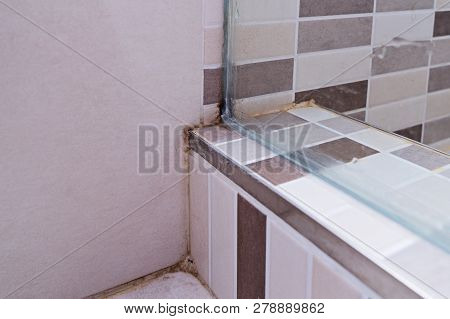 Black Mold On Tile In Shower Cabin. Poor Ventilation, Humidity, Condensation Cause Fungus On The Wal