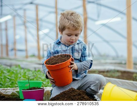 Healthy Child. Healthy Child Working In Greenhouse. Child Planting Trees In Healthy Ecology. Healthy
