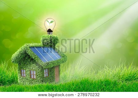 Eco House On Grass Lawnin Green Park Area Concept