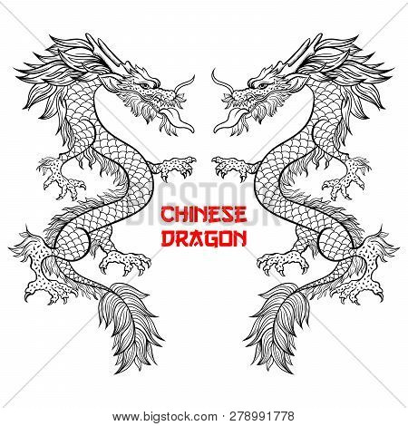 Two Chinese Dragons Hand Drawn Vector Illustration. Mythical Creature Ink Pen Sketch. Black And Whit