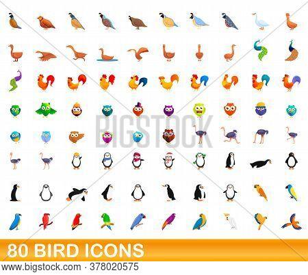 80 Bird Icons Set. Cartoon Illustration Of 80 Bird Icons Vector Set Isolated On White Background