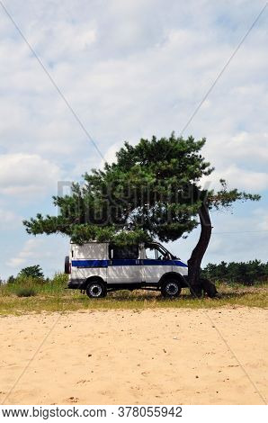 A Police Van Under A Lonely Pine Tree.