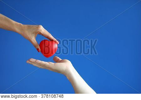Female Hand Give Red Heart To Male Hand On Blue Background Close-up. Professional Diagnosis And Trea